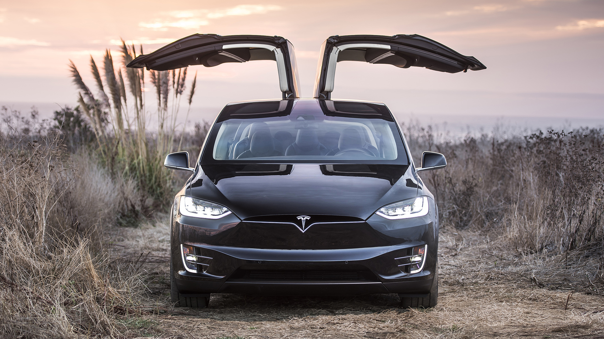 tesla model x 60d nixed just three months after being launched. Black Bedroom Furniture Sets. Home Design Ideas