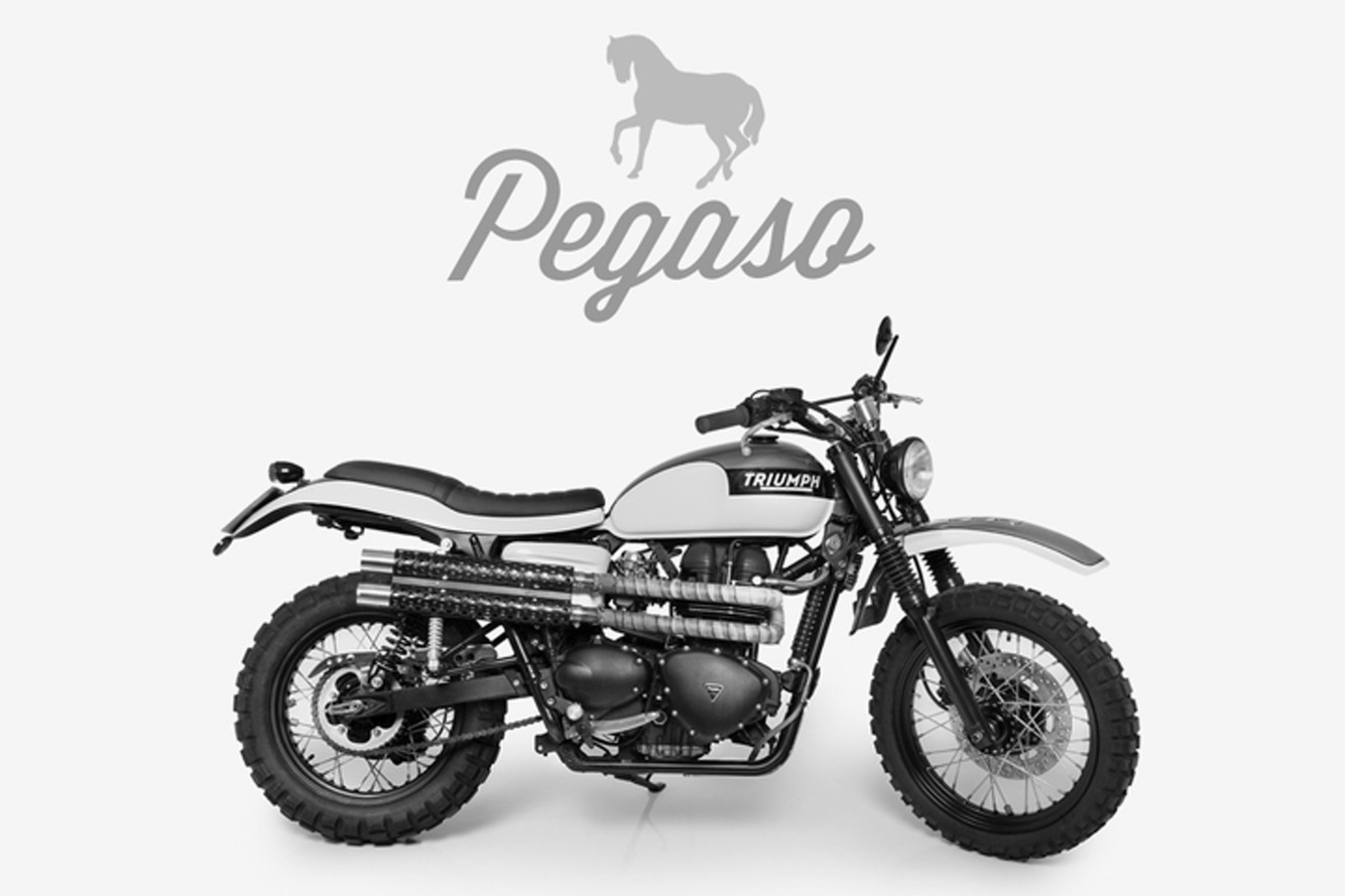 Tamarit Triumph Pegaso a Café Racer for Any Terrain [w/Video