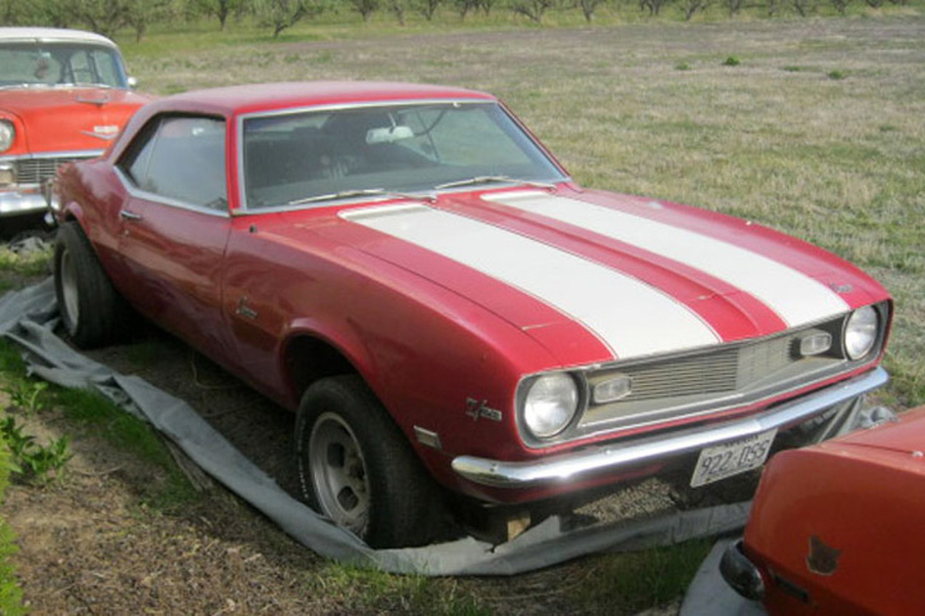 Washington Man Pulls American Muscle from an Orchard