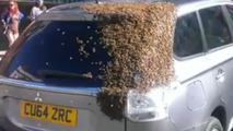 Mitsubishi Outlander followed and swarmed by hundreds of bees