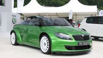 Skoda decides not to build cheap sports car