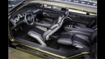 Kia Telluride: Das Doktor-SUV