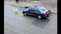 Auto attaccate dai cani, i video in rete 002
