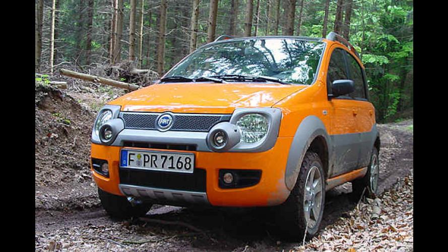 Fiat Panda 4x4 Cross: Nobel ausgerüsteter kleiner Kraxelbär