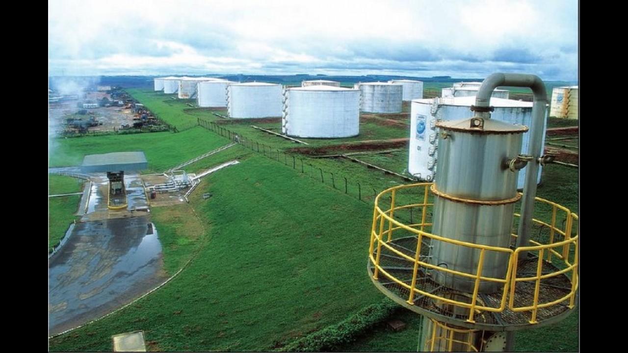 Percentual de etanol na gasolina pode voltar a 25%