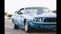 Dodge Challenger Race Car