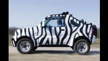 Zebras für die Stadt