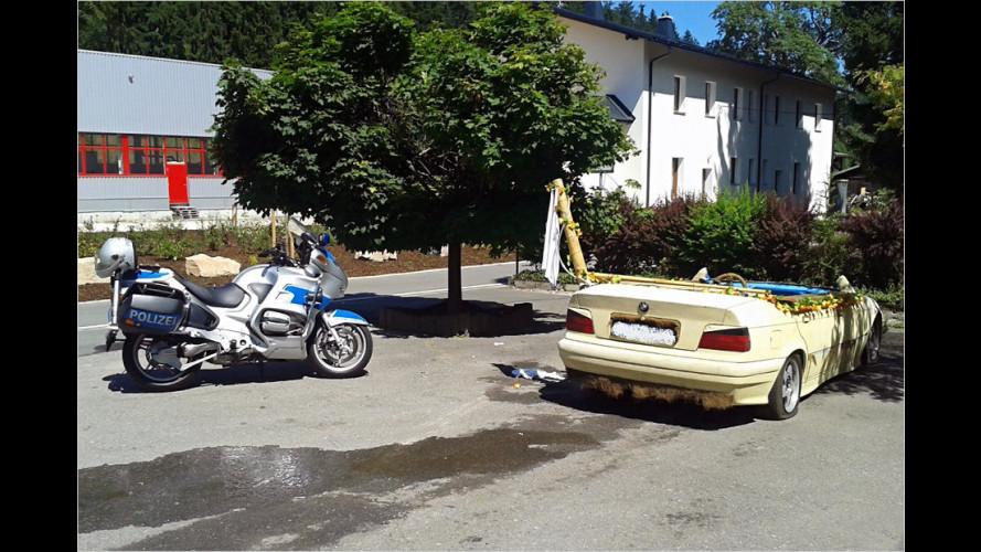 Cool? BMW-Pool gestoppt