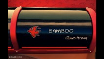 Rinspeed BamBoo Concept