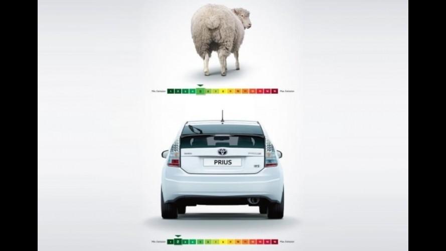 Toyota Prius: menos poluente que uma ovelha