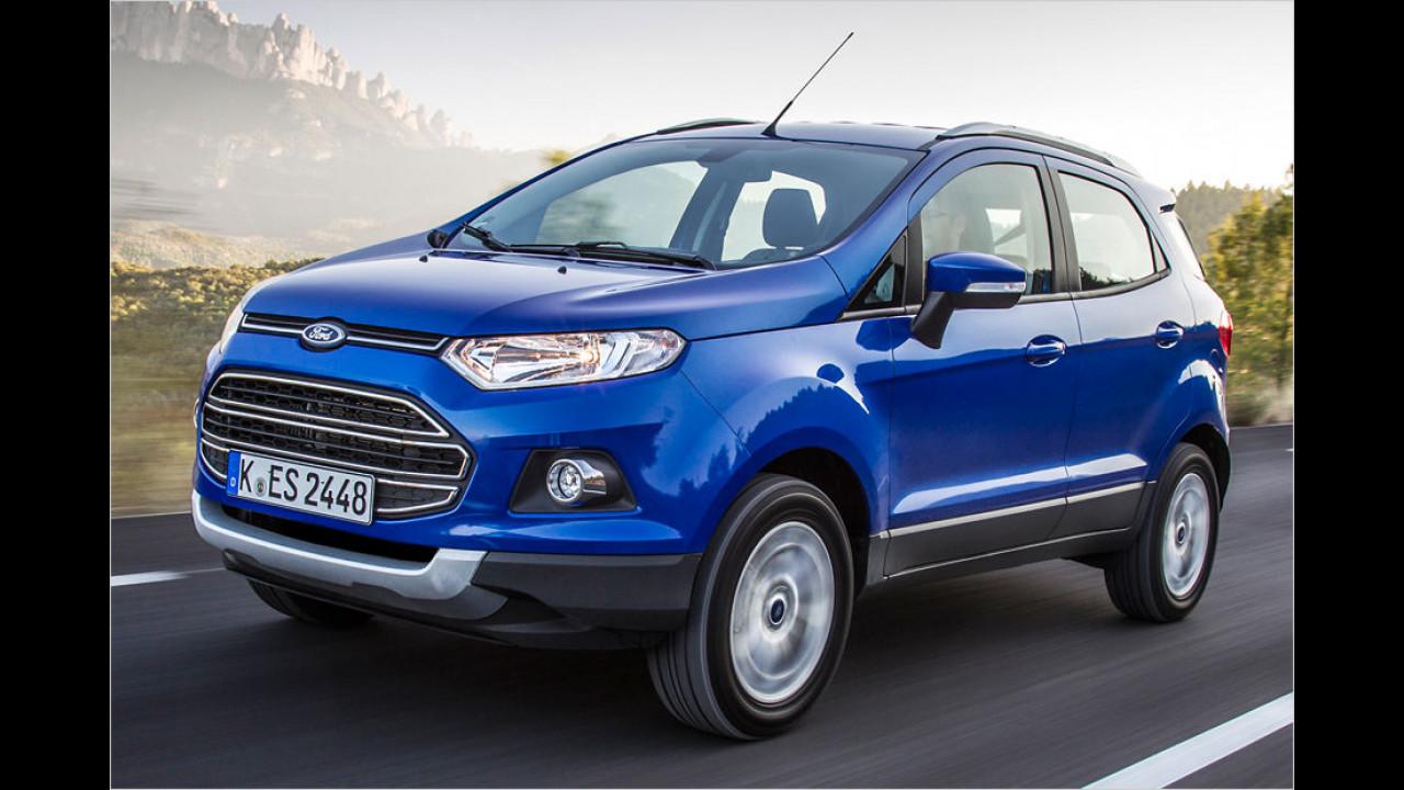 Flop: Ford EcoSport, Baujahr 2015, 148 Standtage