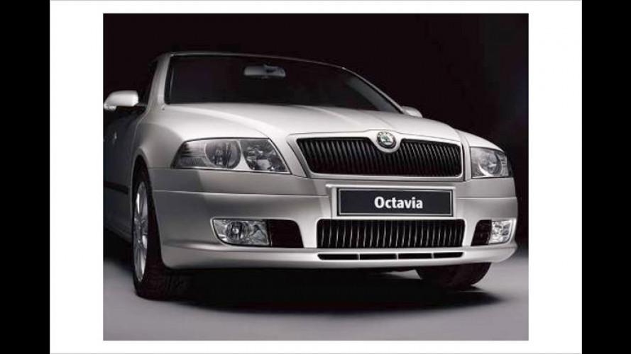 Skoda Octavia: Sondermodell mit Sportoptik, Klima und mehr