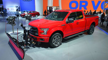 2015 Ford F-150 with snow plow