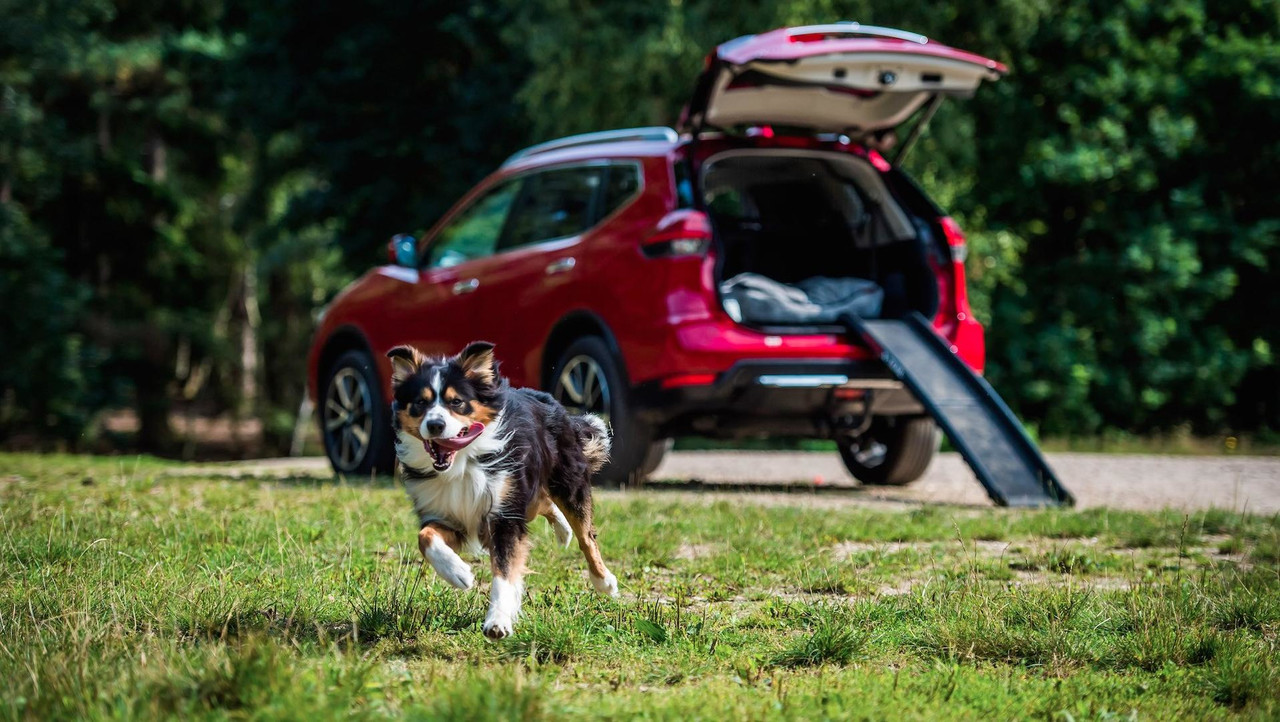 Nissan X-Trail Paw Pack