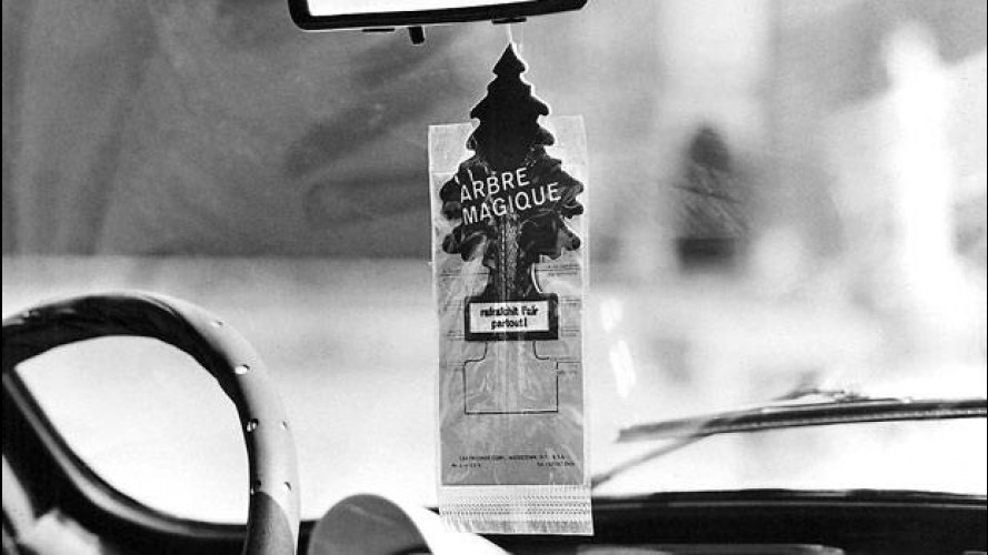Arbre Magique, cinquant'anni profumati