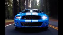 Mehr Muskeln für Mustang