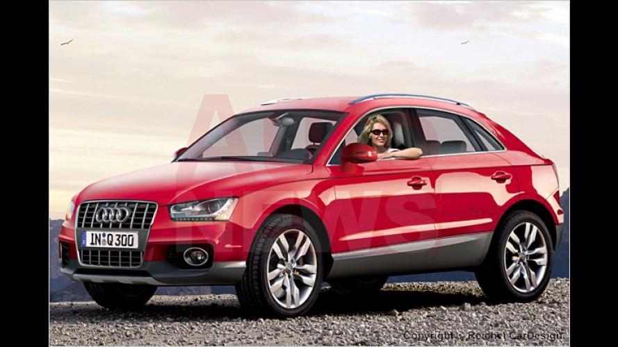 BMW X1 und Audi Q3: Kurz und knackig in die Zukunft