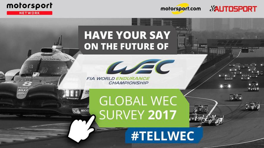 FIA WEC pesquisa