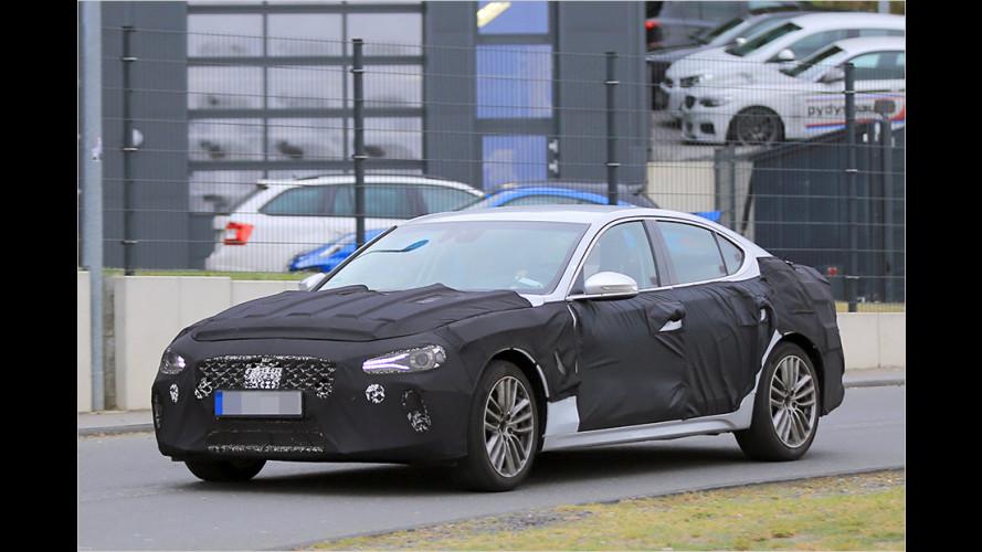 Erwischt: Hyundai Genesis G70