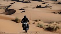 Harley-Davidson Desert Wolves by El Solitario