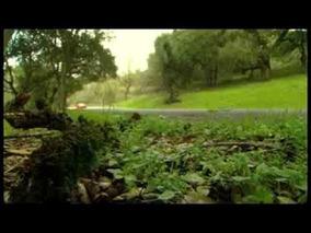 2012 Boss Mustang Driving Shots