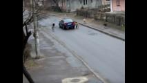 Auto attaccate dai cani, i video in rete 003