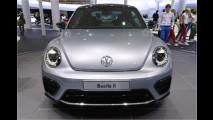 Beetle-