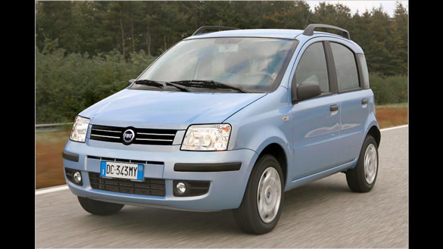 Einen Fiat für unter 6.000 Euro – mit dem Ecoplus-Bonus