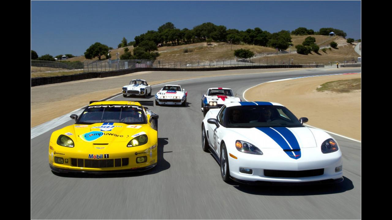 Corvette in Le Mans (2010)