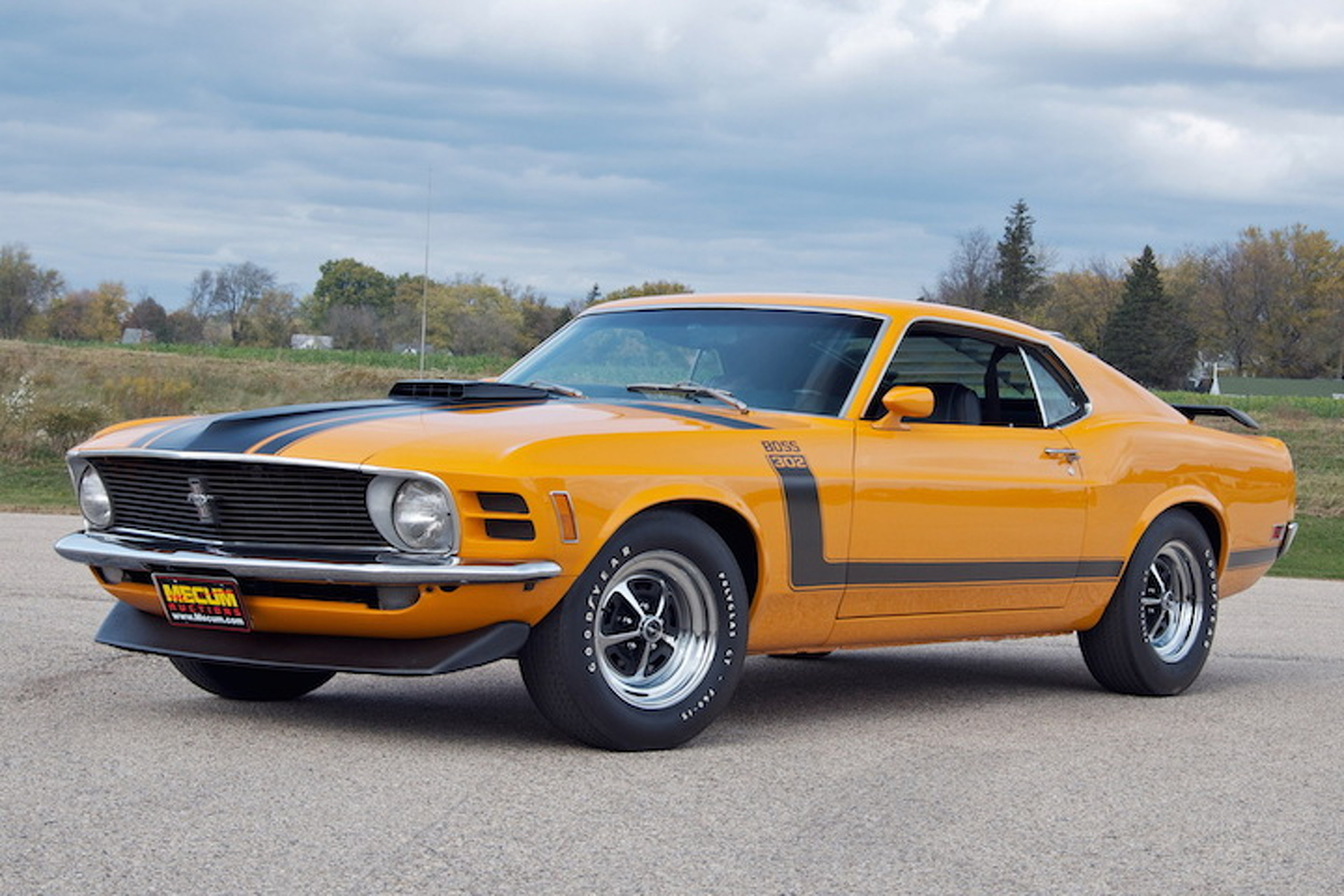 Mustang Concept >> 8 Great Ford Mustang Boss 302 Colors