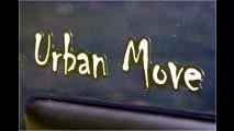 Urbaner Löwe