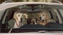 Subaru Dog Commercials