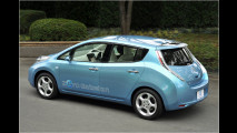 Weltweit E-Autos fördern