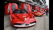 Ferrari Festival of Japan 2010