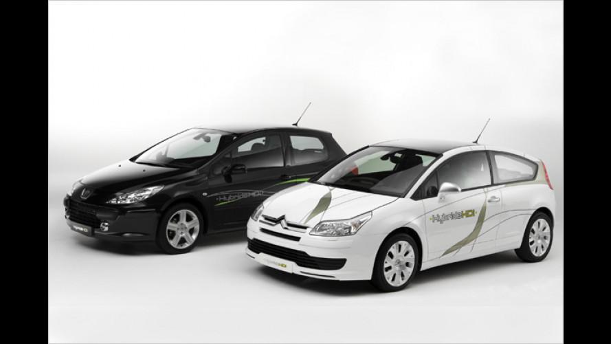 Diesel-Hybrid: Weniger Sprit rein, weniger Kohlendioxid raus