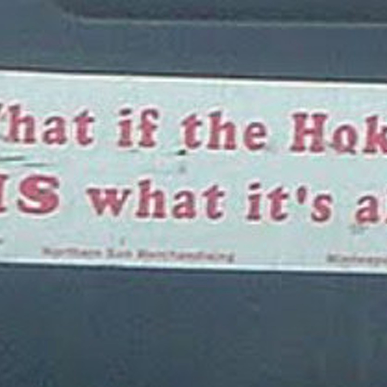 13 Bumper Stickers To Restore Faith In Humanity