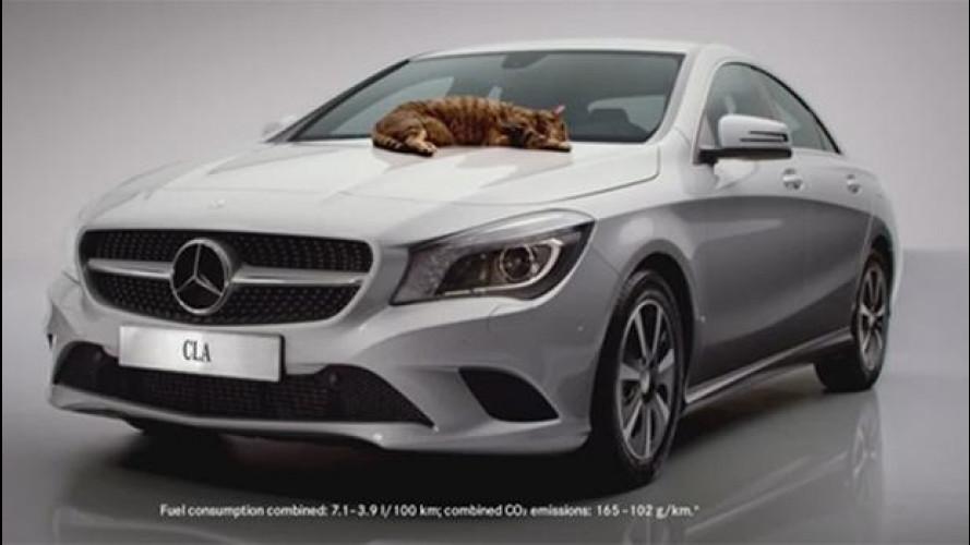 Mercedes CLA, il divertente spot con i gatti [VIDEO]
