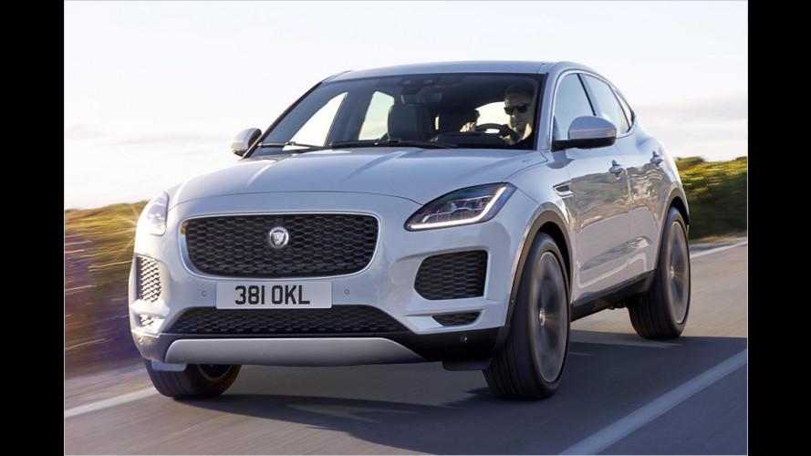 Jaguar E-Pace (2018): Alle Infos